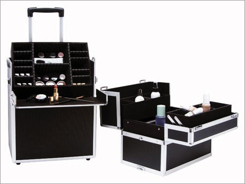 Delicate Professional Makeup Cases